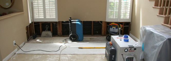 Foothill Ranch Mold Removal