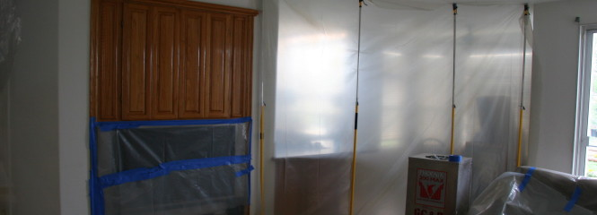 Capistrano Beach Mold Removal