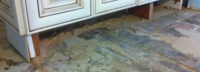 Laguna Woods Mold Removal