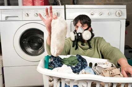 How Remove Mold From Clothes Gregory Restoration