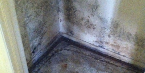 flood damage orange county, prevent mold orange county, mold removal orange county, flood repair orange county